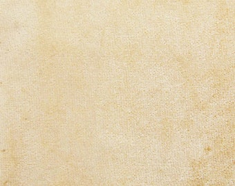 """Beige Velvet Fabric, Stretchy Velvet, Upholstery Fabric, Apparel Fabric, 60"""" Inch Wide Fabric By The Yard ZVE94J"""