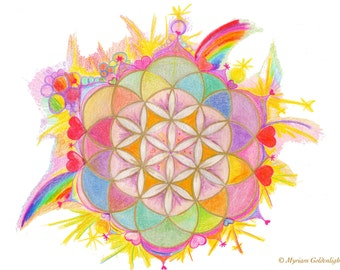 Rainbow Blue Lotus