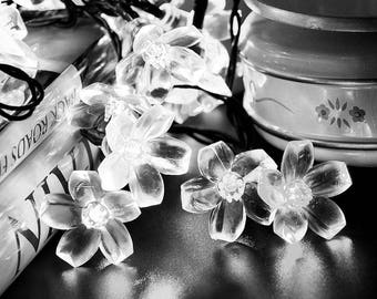 50 LED Solar Lights, 21ft Blossom String Lights Decorative Lighting , Garden, Wedding, Xmas Tree, Party, Holiday, Cool White USA Seller