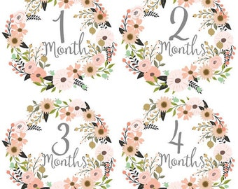 Monthly milestone stickers baby stickers baby shower gifts baby stickers baby gifts newborn baby presents stickers