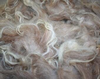 American Churro raw wool 0.5kg/1.1lb