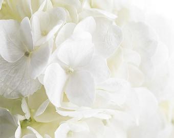 White hydrangea Flower Print Spring Decor white hydrangea white Wall Flower Decor Abstract Flowers Spring Floral Decor Spring Cottage Art