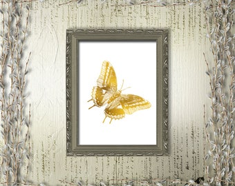 Butterfly Printable Art Gold White Print Wild Nature Home Decor Animal Insect Art Moth Fauna Nursery Decor Digital Art / Instant Download