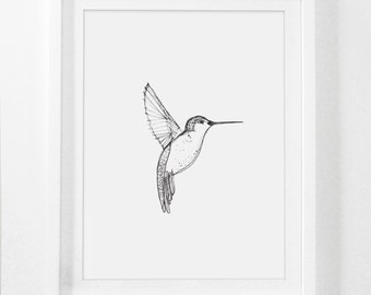 Drawing Print, Hummingbird Poster, Hand Drawings, Hummingbird Prints, Drawn Art, Sketches, Sketch Art, Hummingbird Drawing, Wall Art