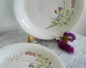 "Arabia Finland ""Pellervo"" Dinner Plates. Designed by Raija Uosikkinen 1949-1964. Set of Two"