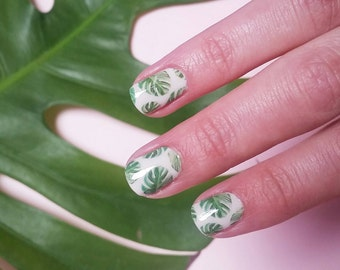 Monstera Deliciosa Nail Decals: Cheese Plant, Tropical, Botanical, Leaves, Leaf, Gardening