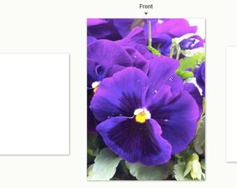 Purple Pansies notecard