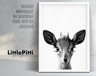 Deer Print Nursery Black And White Baby Deer Fawn Woodlands Deer Deer