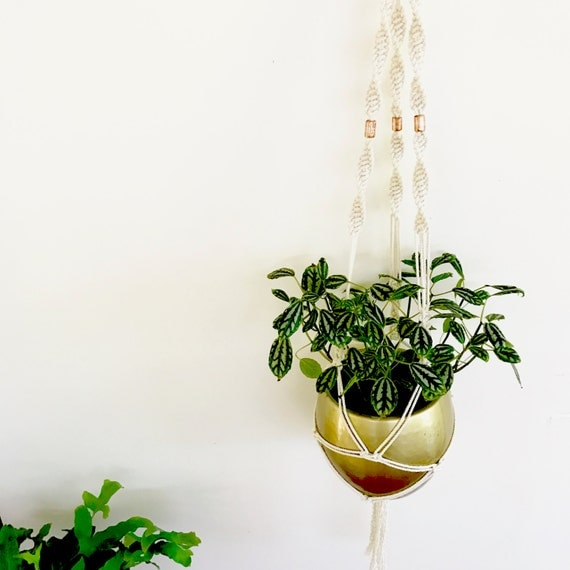 Macrame Plant Hanger Pattern || DIY Do It Yourself || Creative Christmas Gift || For Her || Indoor Plant Boho Home Decor