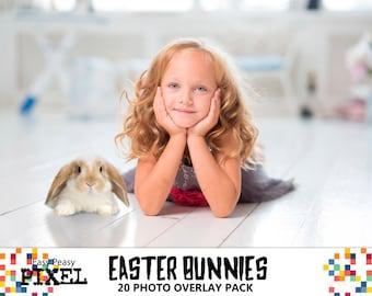 EASTER BUNNIES OVERLAYS, Photoshop Overlays, Easter Overlays, Easter Bunny Overlays, Easter Bunny, Rabbit, Bunny, Bunnies, png