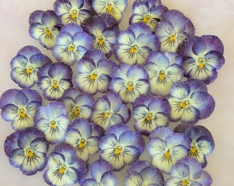 24 Edible Candied Pansies  - Crystallized Real Pansy Flowers - Violas - Purple & Cream