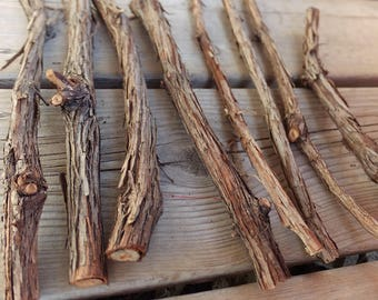 Grape vine twigs, craft sticks and branches, twig craft supplies, natural craft supplies, fairy hobbit house, florist's supply