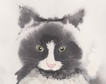 Fluffy Grey Cat - A4 Print Cat for Cat Lovers The look of Love or is that watching Lunch!