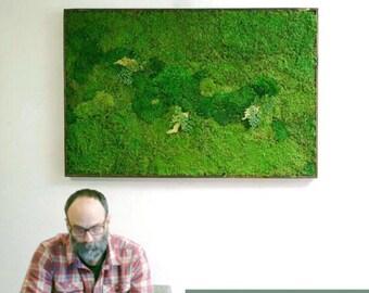 "One 36x54"" Moss Wall Art. Real preserved green wall. Real preserved moss and ferns. Zero care moss art. NO STICKS."