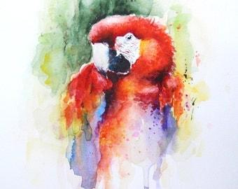 Red Parrot painting, Original watercolor, Boba painting, Watercolor art