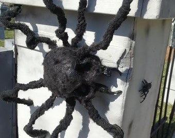 Halloween Skull Spider