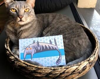 Crazy Post Card grey tabby cat tabby tabby grey cat/cartolina