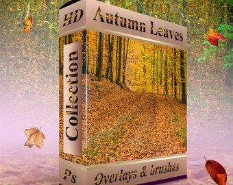 Falling leaves clip art Autumn leaves clipart, photoshop overlay - 40pcs photo overlay . png files and 24 realistic leaves .abr format