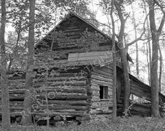 Black and White Photo of old House / Barn / Woods INSTANT DOWNLOAD Digital Download picture