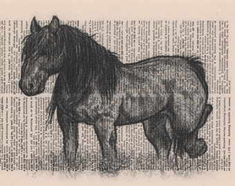 Horse Art Print, Wild Mustang Art Print, Book Page Art, Print on Book Page, Book Page Illustration, Vintage Dictionary Art