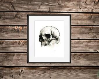 Half Skull Print