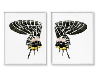 Butterfly Wall Art, Butterfly Wings, Art Prints, Wall Art Set, Diptych, Printable Art, Digital Download, Vintage Butterfly, Illustration