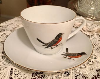 Schumann Arzberg cup and saucer made in Bavaria - service for one