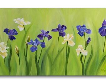 Tranquil Iris