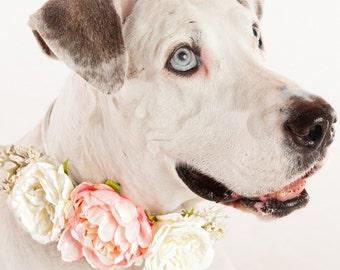 MICHAELA- Wedding Dog Collar, Flowerdog, Dog Flower Crown, Flower Dog Collar, Puppy Wedding Collar, Dog Flower Collar, Spring Wedding,Wreath
