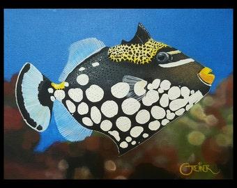 Clown Trigger Fish painting