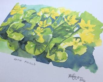 Marsh Marigolds - Inkjet Print