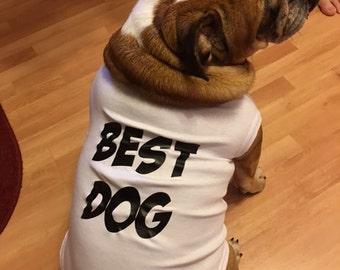 Dog Shirt, Wedding Dog Shirt, Dog Wedding Attire, Rehearsal, Wedding Day