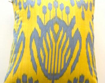 Ikat  decorative pillows