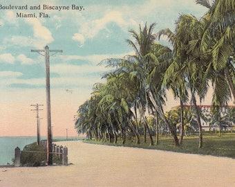 Miami, Florida Vintage Postcard - The Boulevard and Biscayne Bay