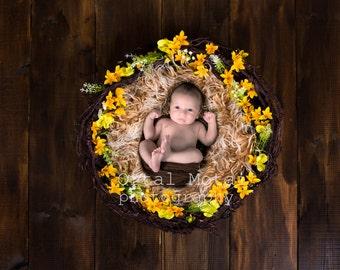 digital newborn backdrop,digital backdrop, newborn boy prop,newborn digital wreath,Digital download,newborn nest Instant newborn flower nest