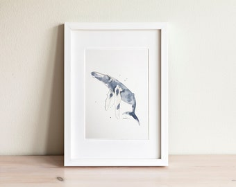 Illustration baleine, Whale Illustration / fait main, handmade