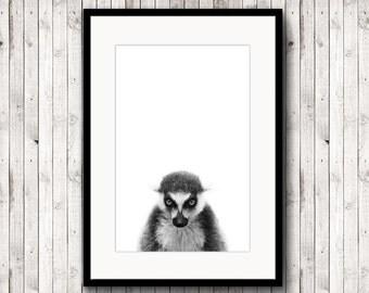 Lemur poster, lemur print,animal poster, black and white photography, poster digital, nursery art, digital download, minimalist