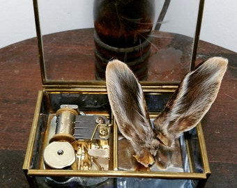 Rabbit Ear Music Box