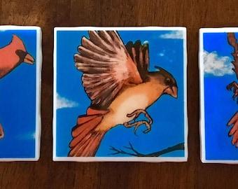 Cardinal coasters, set of three