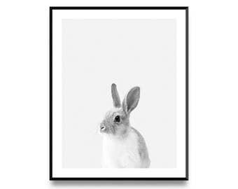 Rabbit Print, Bunny Print, Nursery Decor, Scandinavian Print, Nursery Art, Animal Print, Nursery Prints, Animal Art, Printable Art