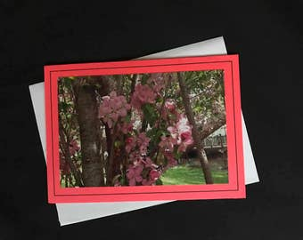 Crabapple Spring Branches Greeting Cards