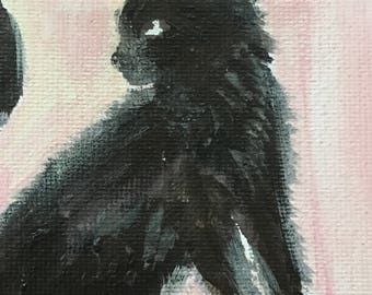 ktten mini canvas | AVMRT original