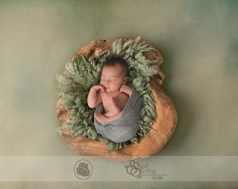 Newborn Driftwood Bowl Digital Backdrop