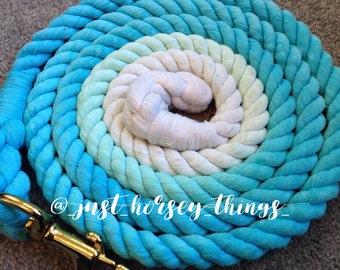 Blue Sky's Lead Rope