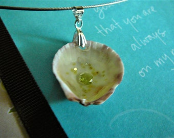 Seashell neckwire necklace