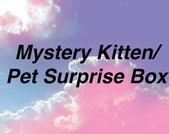 Mystery Pet Surprise Box