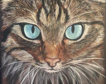 Cat Eyes (Print)