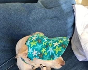 Starfish Dog VIsor