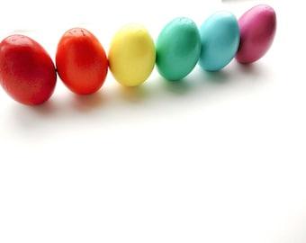 Hand painted wooden eggs (rainbow set - 6 eggs)
