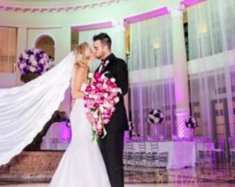 Bridal Veil New About 9 Feet Long